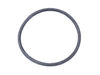034121119 Thermostat O-Ring | VR6 | V6
