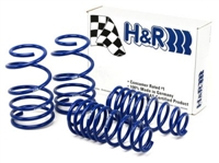 50487-77 H-R Super Sport Springs | BMW E82 | E88 1-series