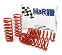 29996-1 H-R Race Springs | B5 Audi A4 Quattro